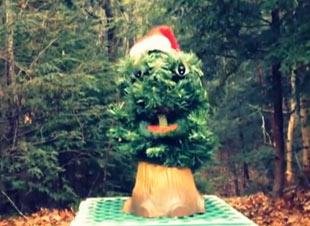 Singing Christmas Tree, Jordin Silver