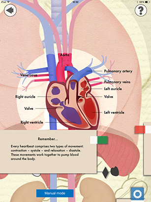 Heart-and-Lungs-Lab-by-Isygames-PR-Heart-B