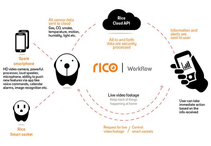 Rico-Infographic